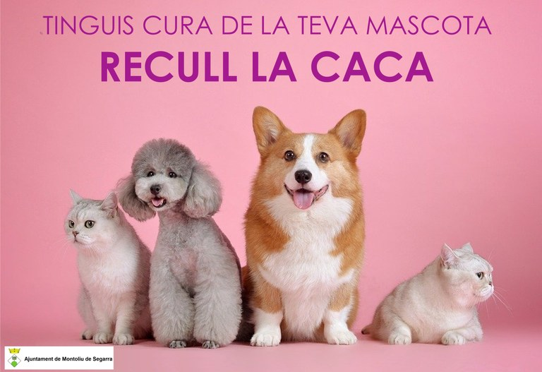 CARTELL MASCOTES CACA.JPG